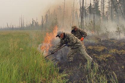 Дым от лесных пожаров в Якутии дойдет до Москвы